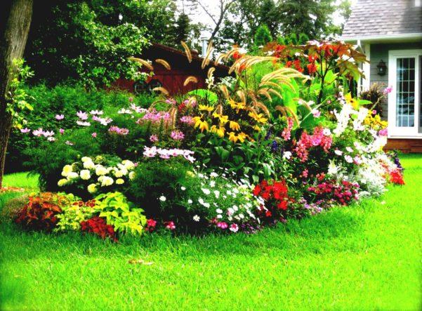 Jardin des simples definition id ias de jardins para for Jardin definition