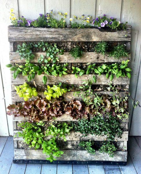 Como Fazer Um Jardim Vertical Com Paletes? Passo A Passo!